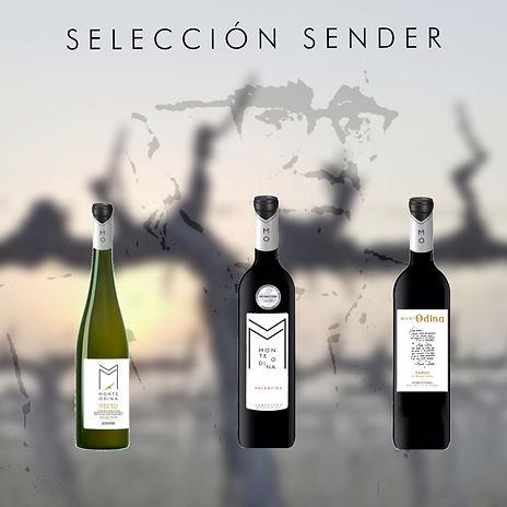 SELECCIÓN SENDER