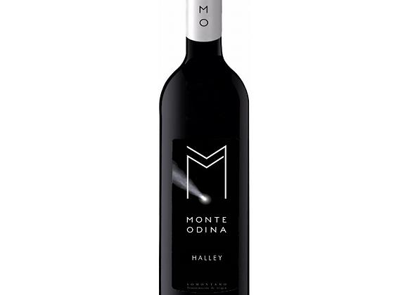 HALLEY 2017 (6 botellas)