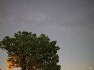 Hill of Three Oaks Milky Way