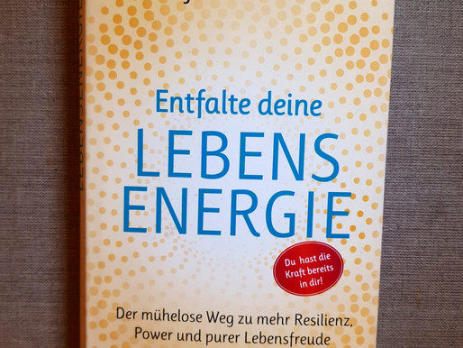Entfalte deine Lebensenergie -Neue Vitalität, Dynamik und Lebensfreude durch die Steigerung von Lebe