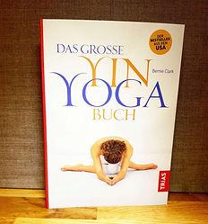 Das_Große_Yin_Yoga_Buch.jpg