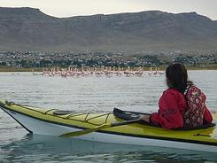 Kayak en Patagonia, kayak en calafate, El Calafate, río la leona, El Chaltén, Lago Argentino, Kayak en Lago Argentino