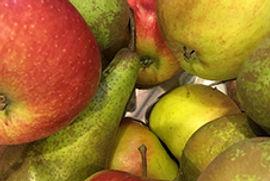 Æbler på C9 frilisten.jpg