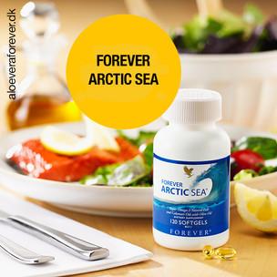 Forever Arctic Sea spot.jpg