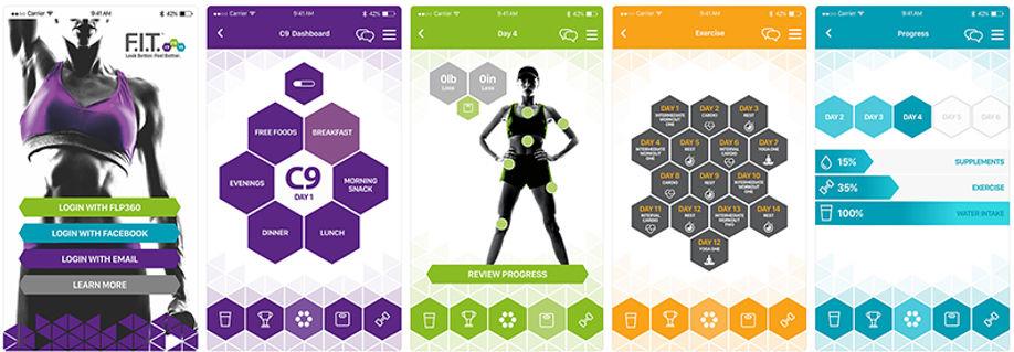 f.i.t. app eksempler.jpg