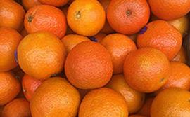 Appelsiner_på_C9_frilisten.jpg