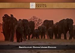Semi-Luxury-Safari-MO