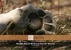 Chobe, Savuti & Khwai - 11 Days
