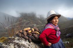 people group 8 potato lady