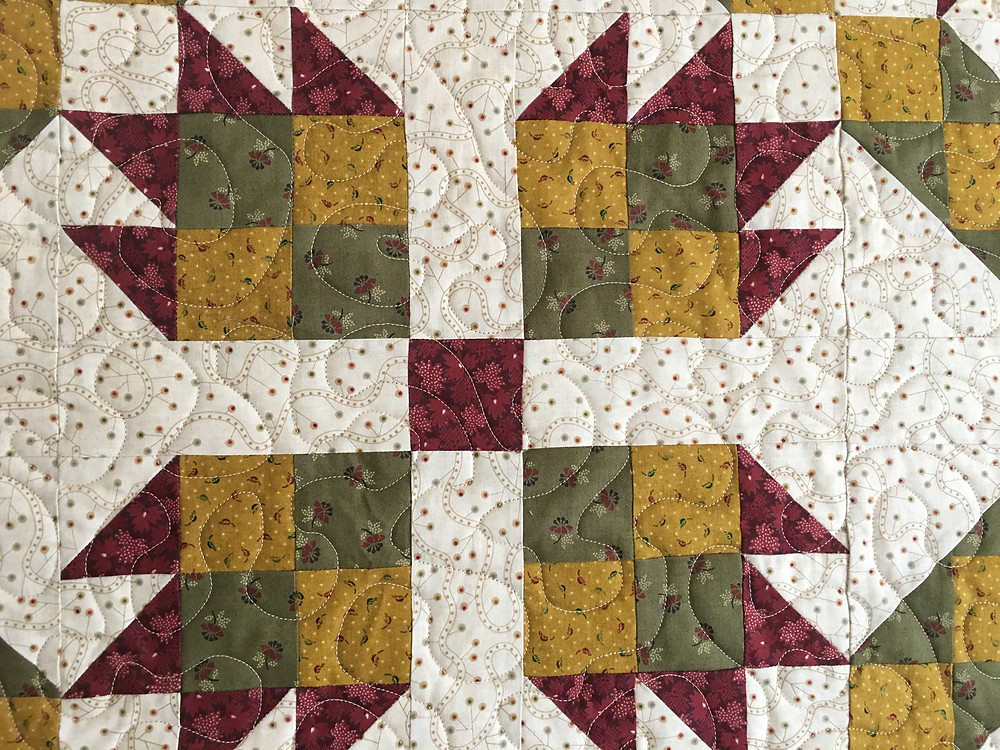Meander Quilting Pattern on Blueberry Pie Quilt by Leanne Strum