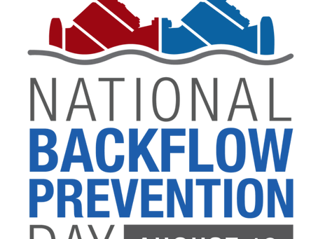 It's National Backflow Day!