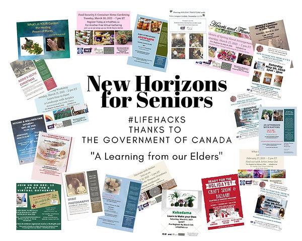 New Horizons for Seniors Wrap up.jpg