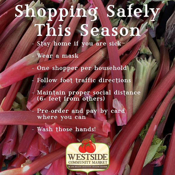 Shopping Safely This Season Graphic.png