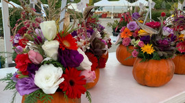 Fall Market Season is Here