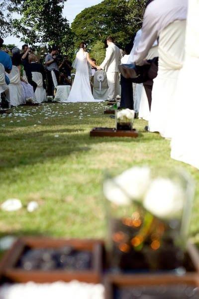 A wedding every year