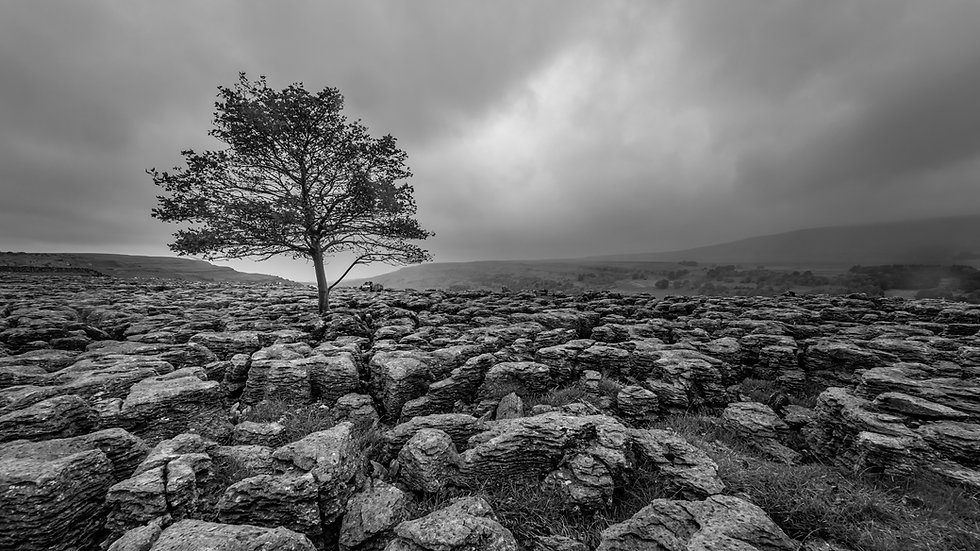 Lancashire Landscape Photography-20.JPG
