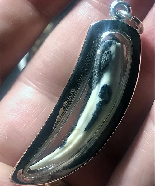 A Crocodile Tooth Amulet for Attraction by Ajarn Phrot in silver