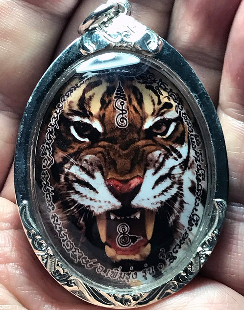 A Powerful Tiger Amulet in silver by Ajarn Perm Rung of Chiang Mai