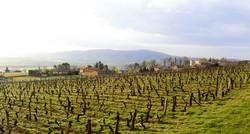 panorama Lachassagne