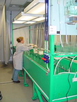 Algae Lab