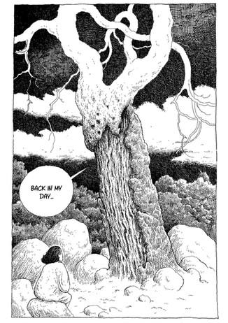 Old tree, good advice.