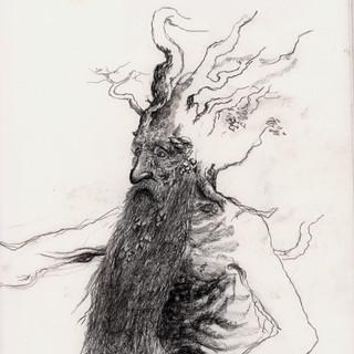 treebeard.jpg