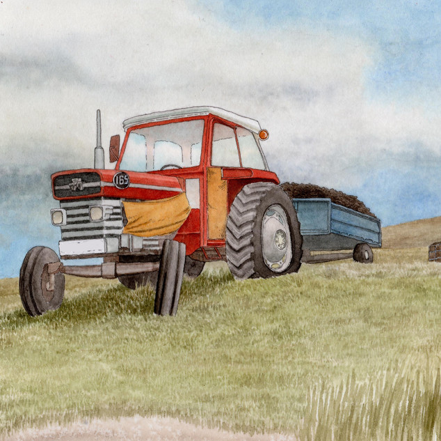 Gordy's tractor no plate.jpg