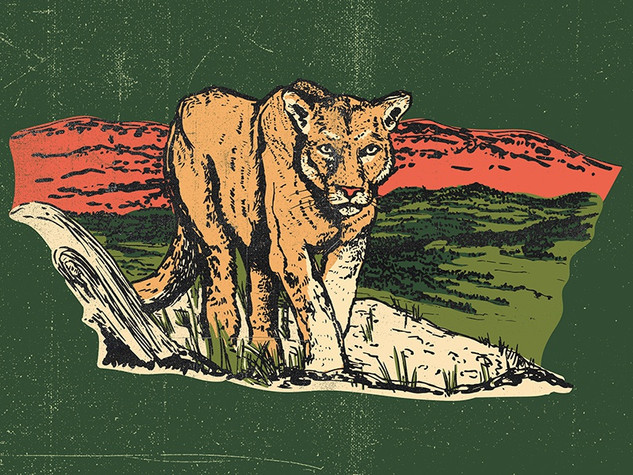 Mountain Lion Parks Project.jpg