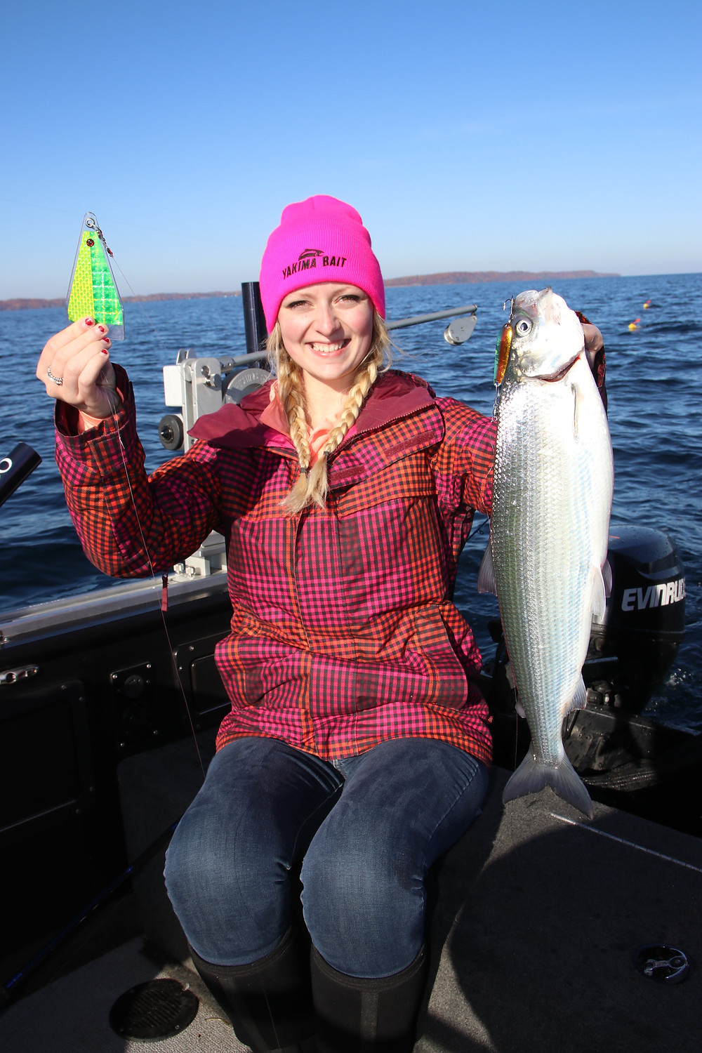 The Big Al Fish Flash is primarily used to catch trout and salmon, but Paige proves that Fish Flash also works great on other species like this Great Lakes cisco a member of the whitefish family.