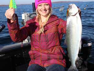 Getting The Most From The Big Al Fish Flash