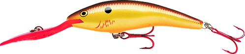Rapala Deep Tail Dancer TDD 9 Sticker