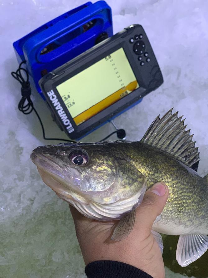 Tricks For Landing Walleye On Ice