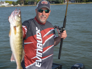 Getting The Most From Big Al Fish Flash
