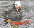 The Spin-n-Glo: A Must Have For                          Trophy Winter Steelhead