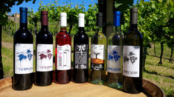 Wine Collection 2014