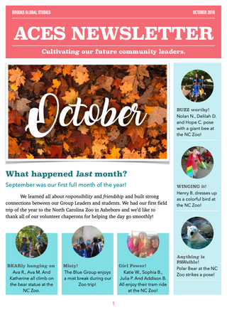 ACES Newsletter Template