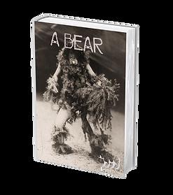 a bear .png