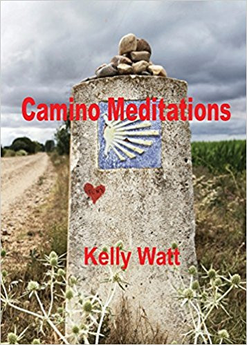 Camino Meditations book cover