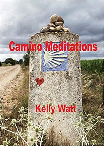 Camino Meditations book cover