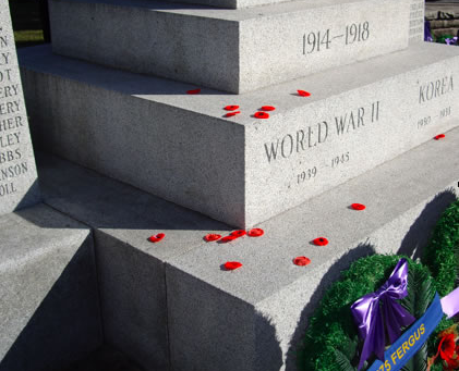 Remembrance Day: A Survivor's P.O.V.