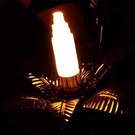 A3 - Crystal Light Bulb - Lux Vortex.JPG
