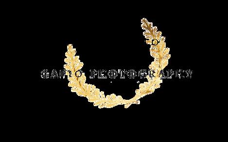 Capio Logo.png