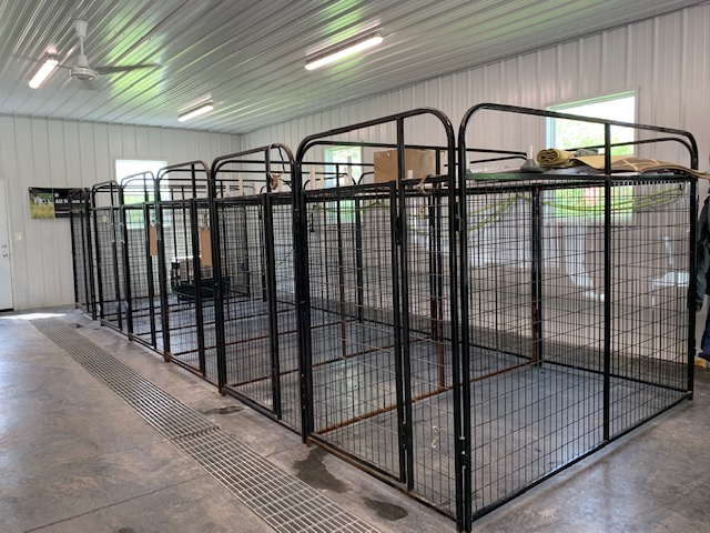 All N Kennel Indoor Boarding