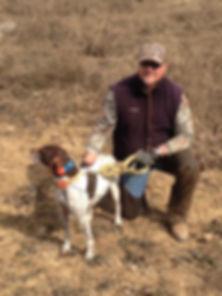 All N Kennel Training