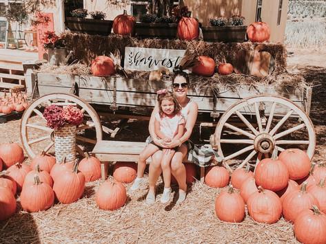 Fall Fun in Georgia