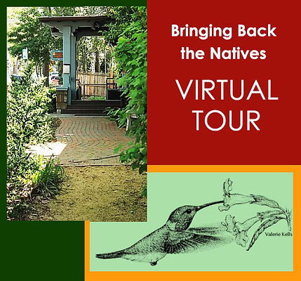 natives tour.jpg