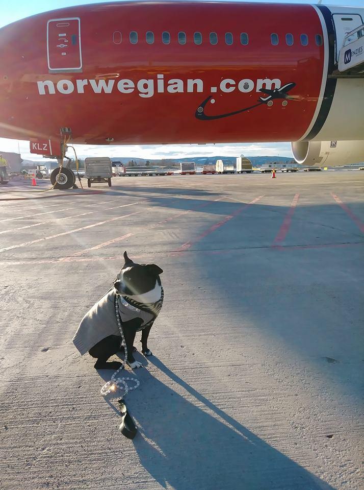 -outside plane