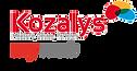 kozalys myweb, tableau de bord, dashboard, statistiques web, google analytics, adwords, facebook, twitter, linkedin, mailchimp, surveymonkey