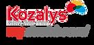 Kozalys mydashboard, tableau de bord, dashboard Sage BOB 50, Winbooks, Book-in, Popsy