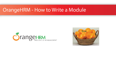 6 Steps on How to Write a New Module in Orange HRM